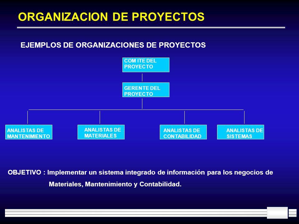 ORGANIZACION DE PROYECTOS EJEMPLOS DE ORGANIZACIONES DE PROYECTOS COM ITE DEL PROYECTO ANALISTAS DE MANTENIMIENTO GERENTE DEL PROYECTO ANALISTAS DE CO