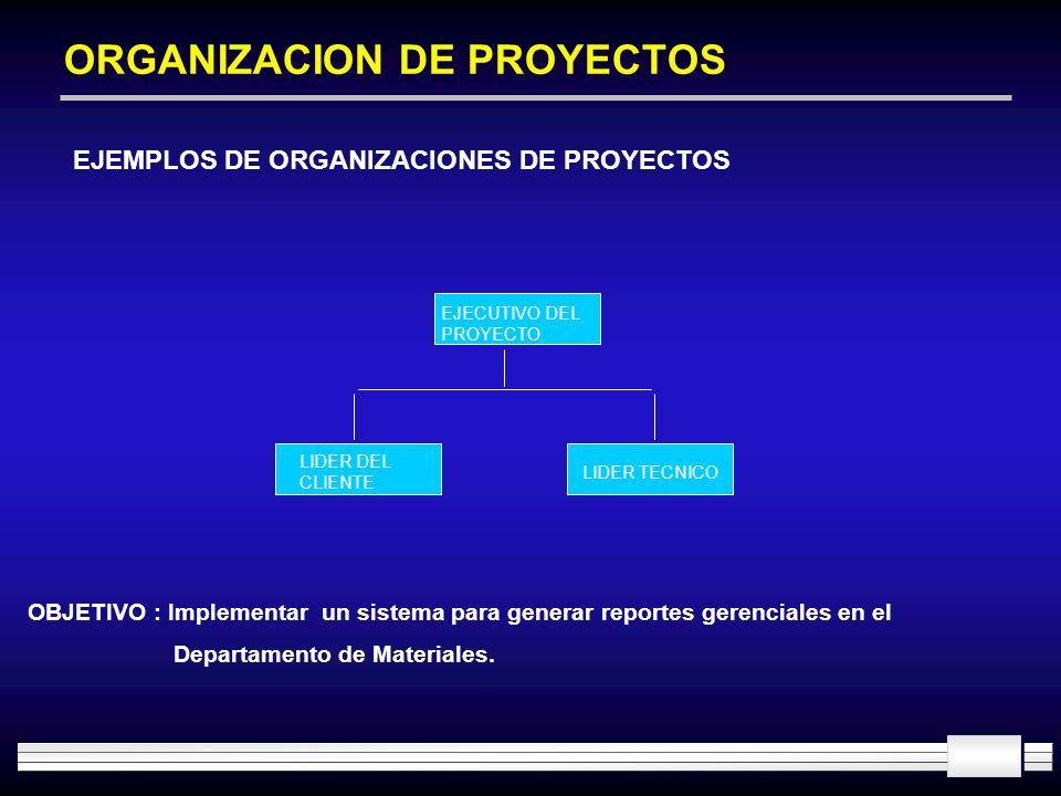 ORGANIZACION DE PROYECTOS EJEMPLOS DE ORGANIZACIONES DE PROYECTOS EJECUTIVO DEL PROYECTO LIDER TECNICO LIDER DEL CLIENTE OBJETIVO : Implementar un sis