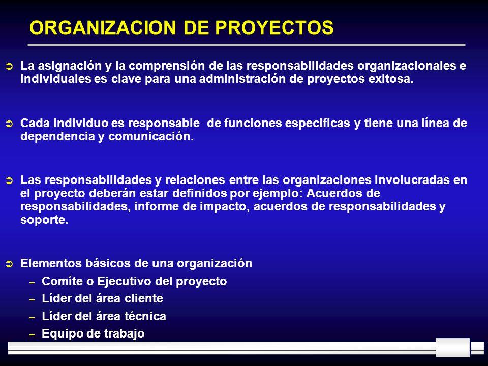 ORGANIZACION DE PROYECTOS La asignación y la comprensión de las responsabilidades organizacionales e individuales es clave para una administración de