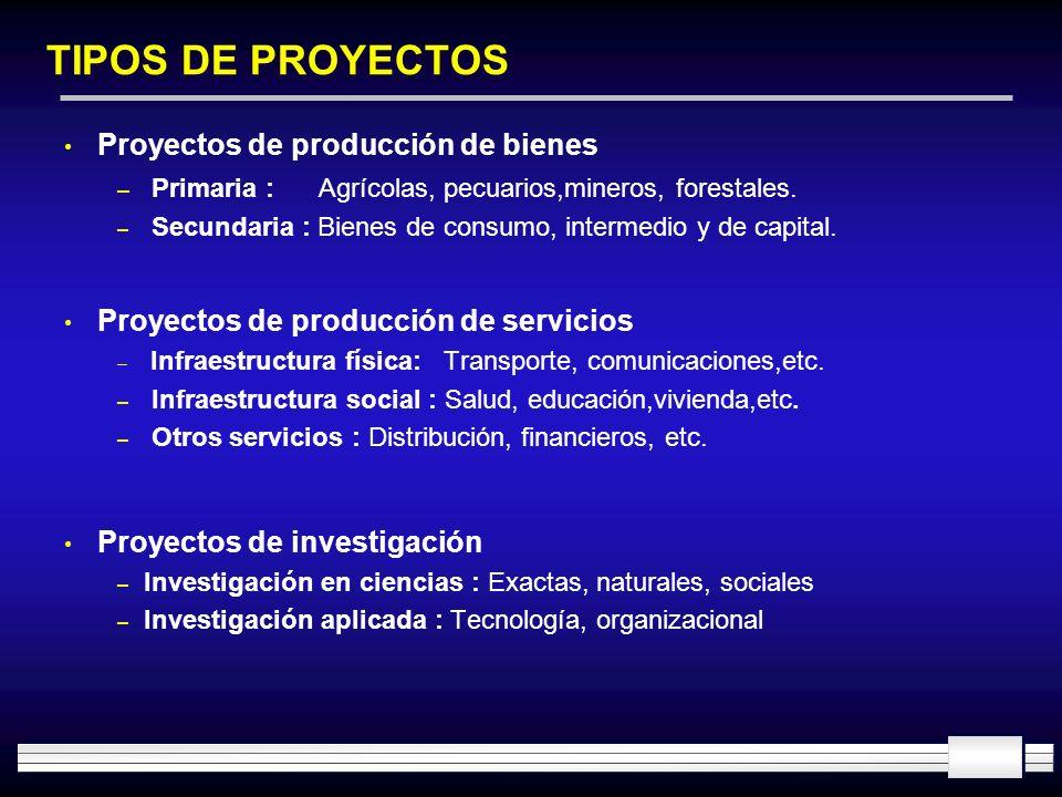 TIPOS DE PROYECTOS Proyectos de producción de bienes – Primaria : Agrícolas, pecuarios,mineros, forestales. – Secundaria : Bienes de consumo, intermed