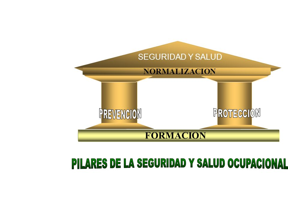 SEGURIDAD Y SALUD NORMALIZACION FORMACION