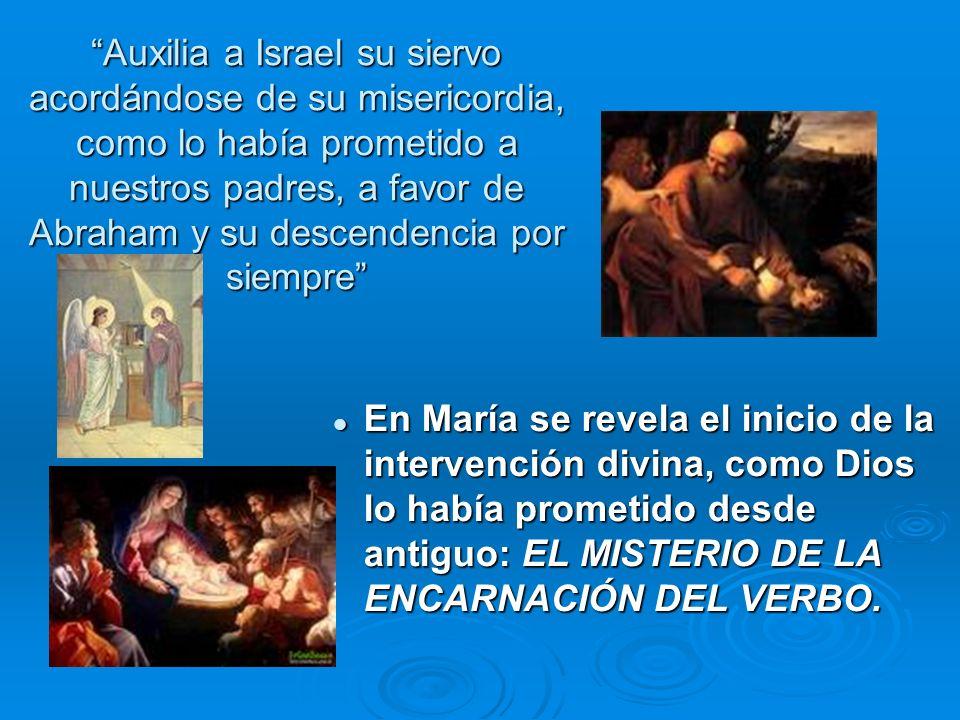 María nos ayuda a descubrir los criterios de la misericordiosa acción de Dios. Lo que atrae su benevolencia es la humildad del corazón María nos ayuda