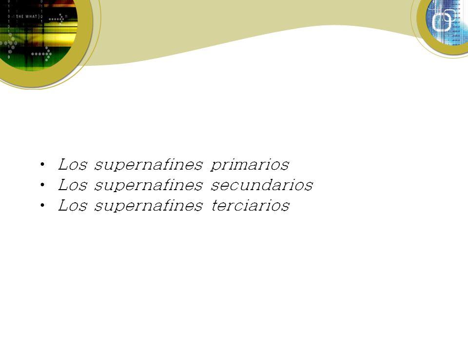Los supernafines primarios Los supernafines secundarios Los supernafines terciarios
