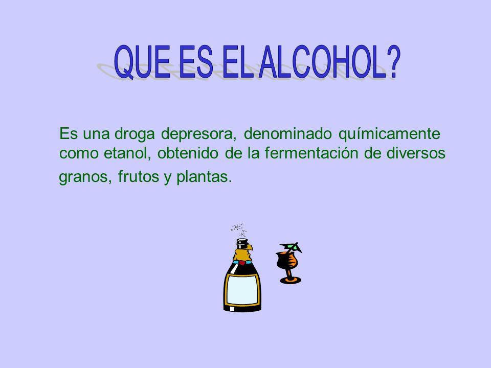 Es una droga depresora, denominado químicamente como etanol, obtenido de la fermentación de diversos granos, frutos y plantas.