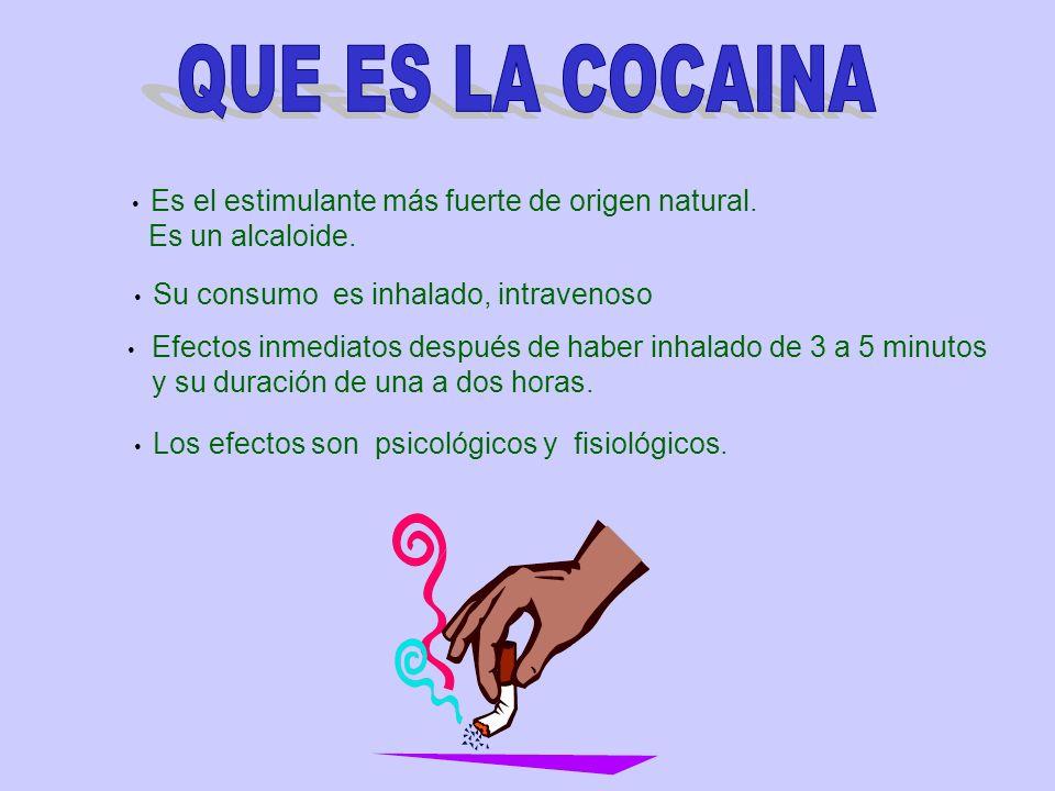 Es el estimulante más fuerte de origen natural. Es un alcaloide. Su consumo es inhalado, intravenoso Los efectos son psicológicos y fisiológicos. Efec