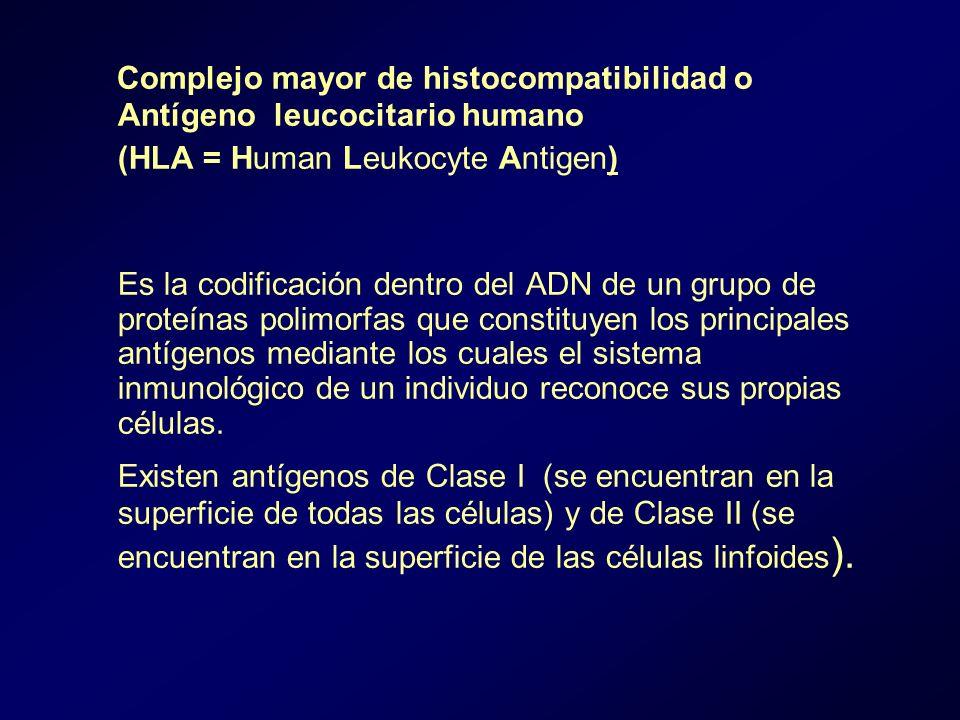 Complejo mayor de histocompatibilidad o Antígeno leucocitario humano (HLA = Human Leukocyte Antigen) Es la codificación dentro del ADN de un grupo de proteínas polimorfas que constituyen los principales antígenos mediante los cuales el sistema inmunológico de un individuo reconoce sus propias células.
