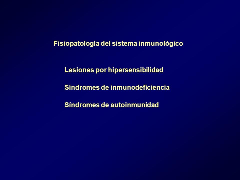 Fisiopatología del sistema inmunológico Lesiones por hipersensibilidad Síndromes de inmunodeficiencia Síndromes de autoinmunidad