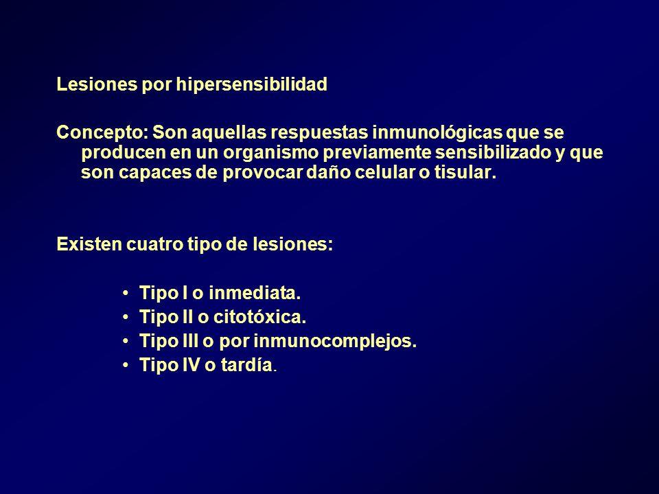 Lesiones por hipersensibilidad Concepto: Son aquellas respuestas inmunológicas que se producen en un organismo previamente sensibilizado y que son capaces de provocar daño celular o tisular.