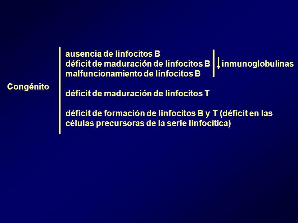 ausencia de linfocitos B déficit de maduración de linfocitos B inmunoglobulinas malfuncionamiento de linfocitos B déficit de maduración de linfocitos T déficit de formación de linfocitos B y T (déficit en las células precursoras de la serie linfocítica) Congénito