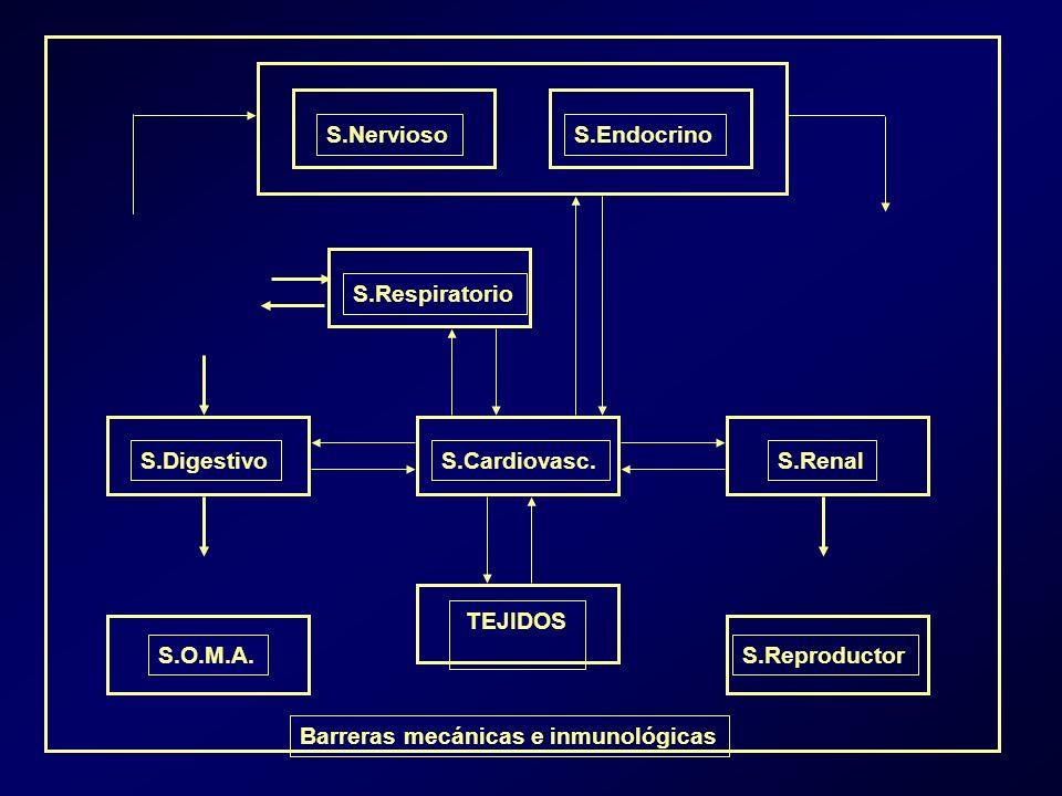 S.NerviosoS.Endocrino S.Respiratorio S.Cardiovasc.S.DigestivoS.Renal TEJIDOS S.O.M.A.S.Reproductor Barreras mecánicas e inmunológicas