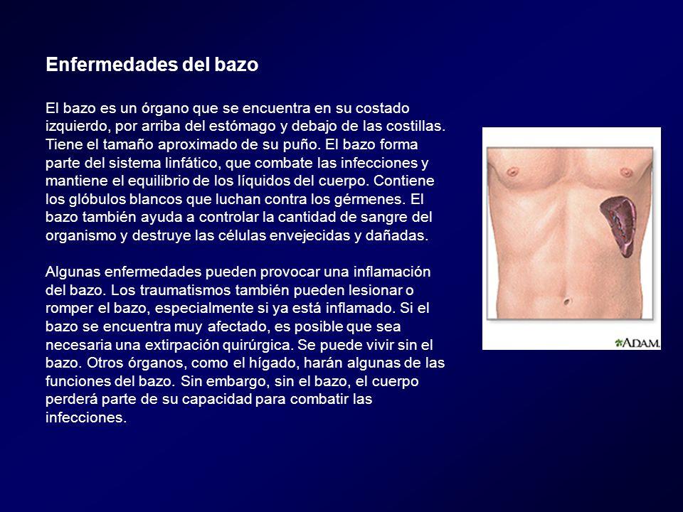 Enfermedades del bazo El bazo es un órgano que se encuentra en su costado izquierdo, por arriba del estómago y debajo de las costillas. Tiene el tamañ