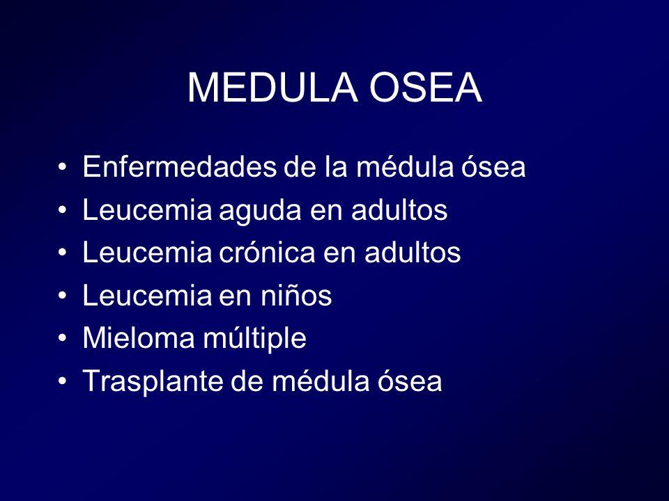 MEDULA OSEA Enfermedades de la médula ósea Leucemia aguda en adultos Leucemia crónica en adultos Leucemia en niños Mieloma múltiple Trasplante de médula ósea