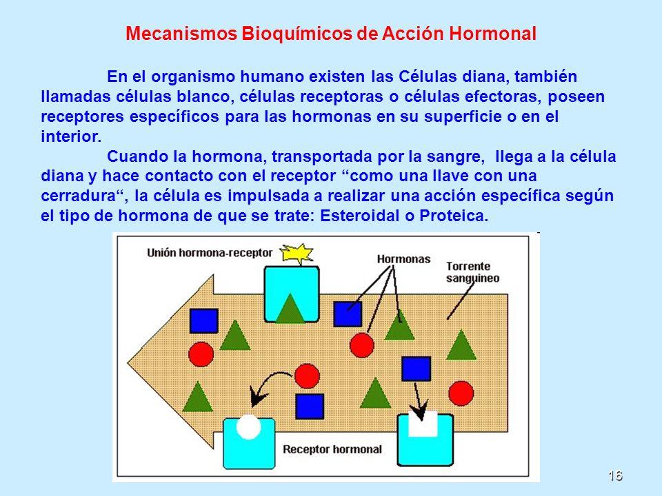 16 Mecanismos Bioquímicos de Acción Hormonal En el organismo humano existen las Células diana, también llamadas células blanco, células receptoras o c