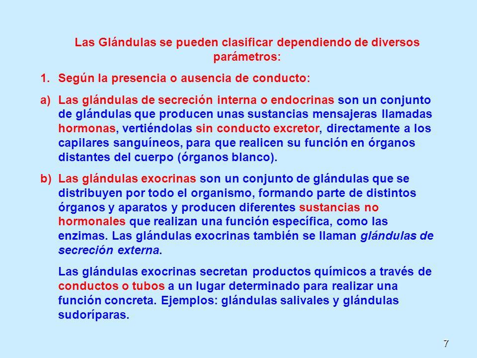 7 Las Glándulas se pueden clasificar dependiendo de diversos parámetros: 1.Según la presencia o ausencia de conducto: a)Las glándulas de secreción int