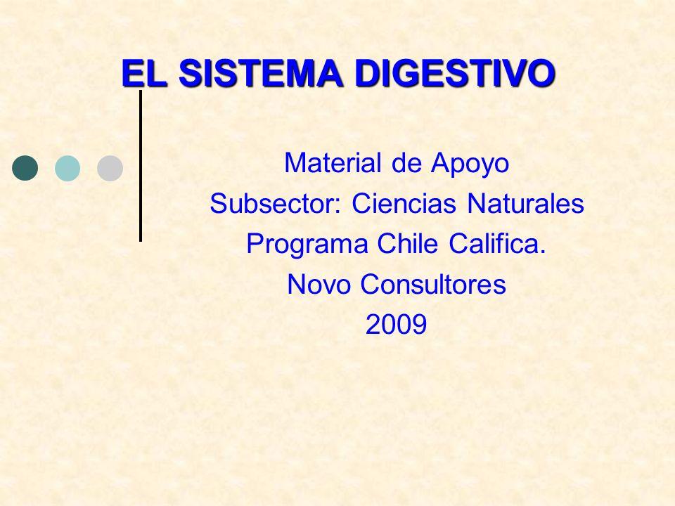 Material de Apoyo Subsector: Ciencias Naturales Programa Chile Califica. Novo Consultores 2009 EL SISTEMA DIGESTIVO