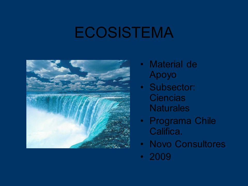 ECOSISTEMA Material de Apoyo Subsector: Ciencias Naturales Programa Chile Califica. Novo Consultores 2009