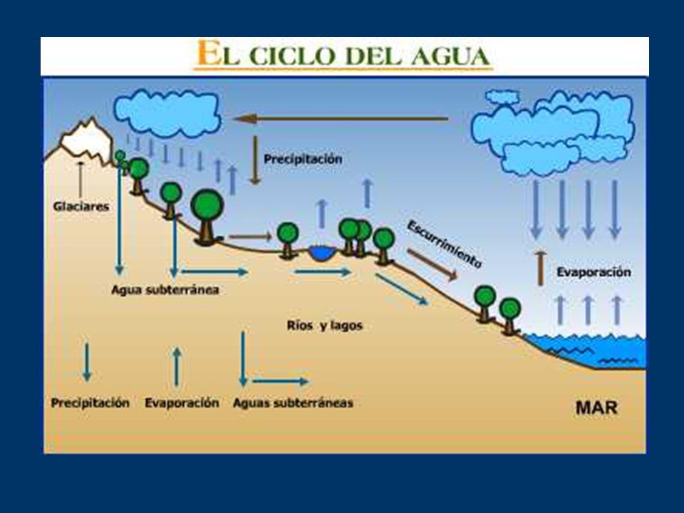 El ciclo se inicia con la evaporación del agua de los mares, de los lagos, de los ríos y del suelo, y por la transpiración de las plantas.