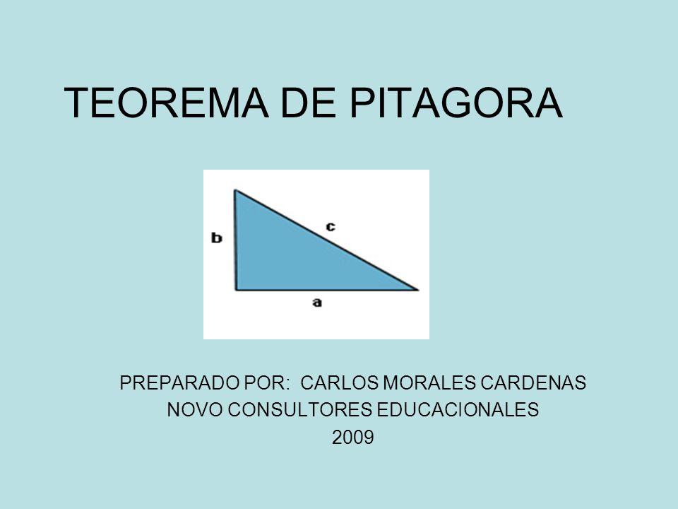 TEOREMA DE PITAGORA PREPARADO POR: CARLOS MORALES CARDENAS NOVO CONSULTORES EDUCACIONALES 2009