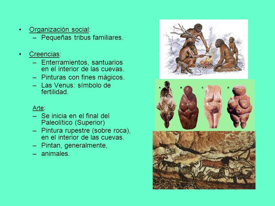 Organización social: –Pequeñas tribus familiares. Creencias: –Enterramientos, santuarios en el interior de las cuevas. –Pinturas con fines mágicos. –L