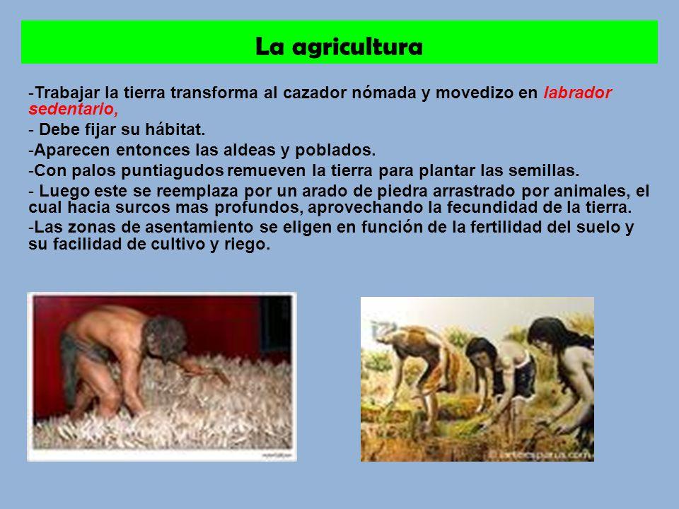 La agricultura -Trabajar la tierra transforma al cazador nómada y movedizo en labrador sedentario, - Debe fijar su hábitat.