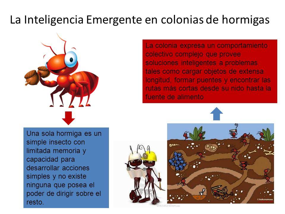 La Inteligencia Emergente en colonias de hormigas Una sola hormiga es un simple insecto con limitada memoria y capacidad para desarrollar acciones sim