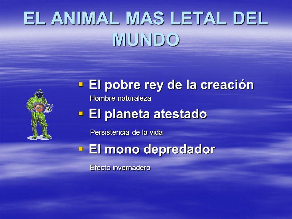 EL ANIMAL MAS LETAL DEL MUNDO El pobre rey de la creación El pobre rey de la creación Hombre naturaleza Hombre naturaleza El planeta atestado El plane