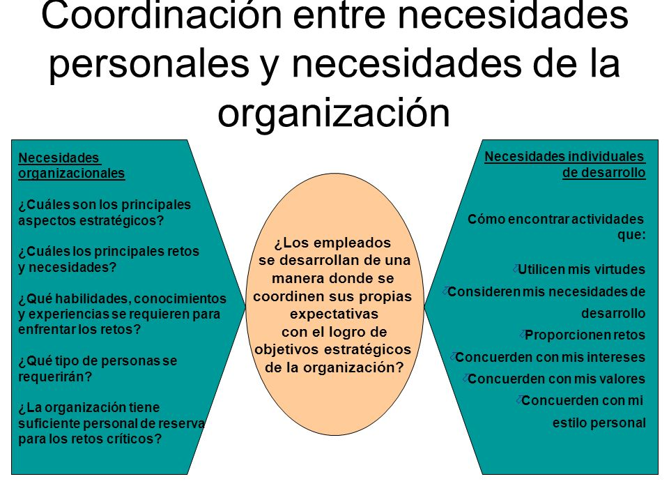 Necesidades organizacionales ¿Cuáles son los principales aspectos estratégicos? ¿Cuáles los principales retos y necesidades? ¿Qué habilidades, conocim