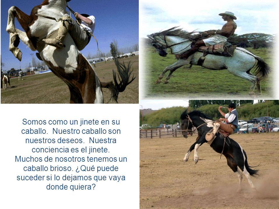Somos como un jinete en su caballo. Nuestro caballo son nuestros deseos. Nuestra conciencia es el jinete. Muchos de nosotros tenemos un caballo brioso