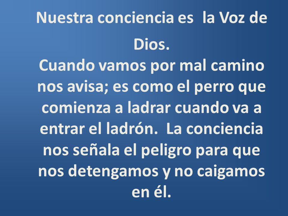 Nuestra conciencia es la Voz de Dios. Cuando vamos por mal camino nos avisa; es como el perro que comienza a ladrar cuando va a entrar el ladrón. La c