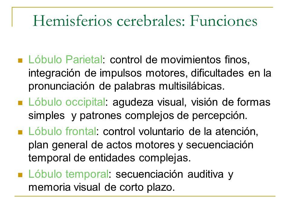 Hemisferios cerebrales: Funciones Lóbulo Parietal : control de movimientos finos, integración de impulsos motores, dificultades en la pronunciación de