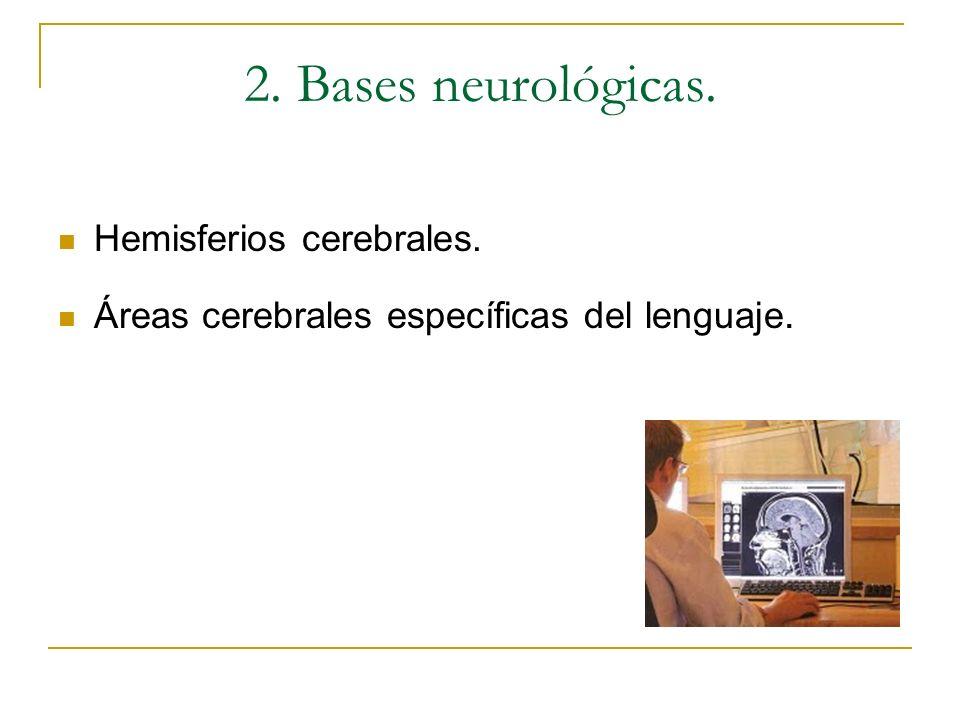 2. Bases neurológicas. Hemisferios cerebrales. Áreas cerebrales específicas del lenguaje.