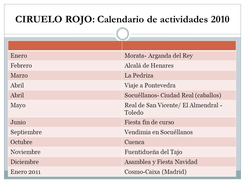 CIRUELO ROJO: Calendario de actividades 2010 EneroMorata- Arganda del Rey FebreroAlcalá de Henares MarzoLa Pedriza AbrilViaje a Pontevedra AbrilSocuél