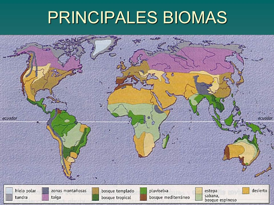 PRINCIPALES BIOMAS