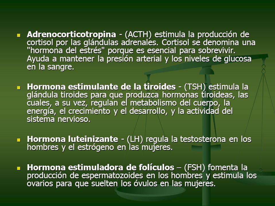 Adrenocorticotropina - (ACTH) estimula la producción de cortisol por las glándulas adrenales. Cortisol se denomina una