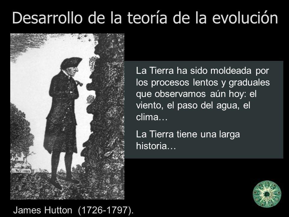 Desarrollo de la teoría de la evolución James Hutton (1726-1797). La Tierra ha sido moldeada por los procesos lentos y graduales que observamos aún ho
