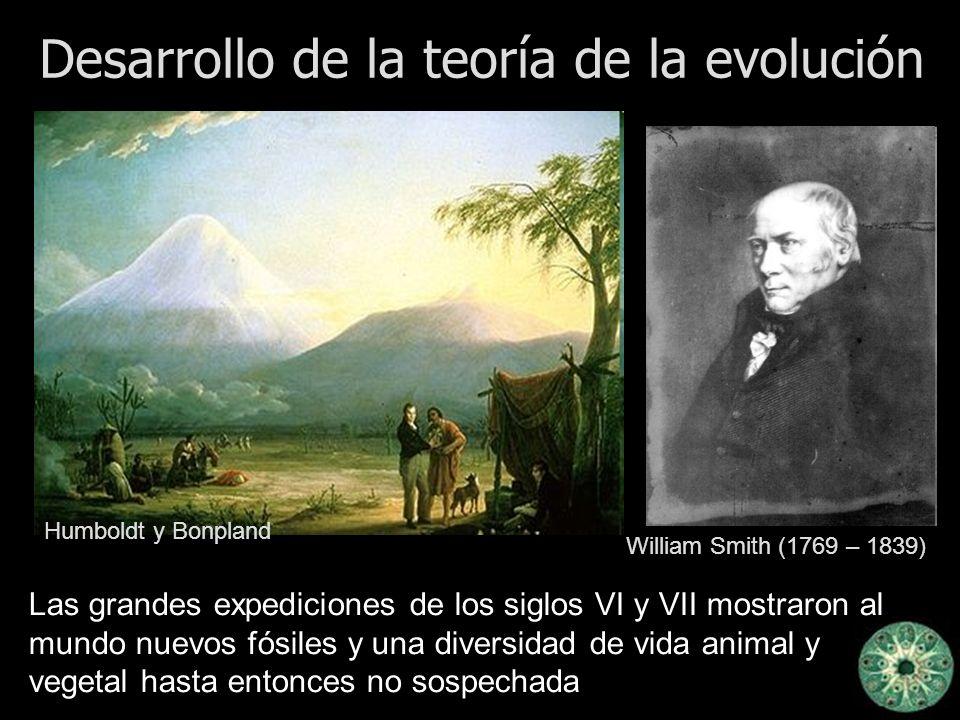 Desarrollo de la teoría de la evolución Las grandes expediciones de los siglos VI y VII mostraron al mundo nuevos fósiles y una diversidad de vida ani