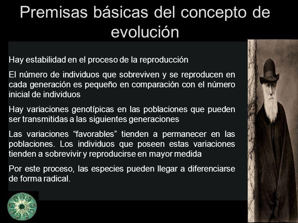 Premisas básicas del concepto de evolución Hay estabilidad en el proceso de la reproducción El número de individuos que sobreviven y se reproducen en
