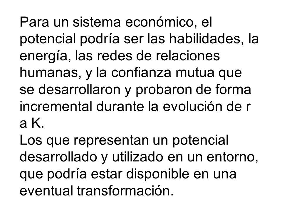 Para un sistema económico, el potencial podría ser las habilidades, la energía, las redes de relaciones humanas, y la confianza mutua que se desarroll