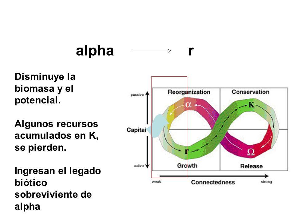 alpha r Disminuye la biomasa y el potencial. Algunos recursos acumulados en K, se pierden. Ingresan el legado biótico sobreviviente de alpha