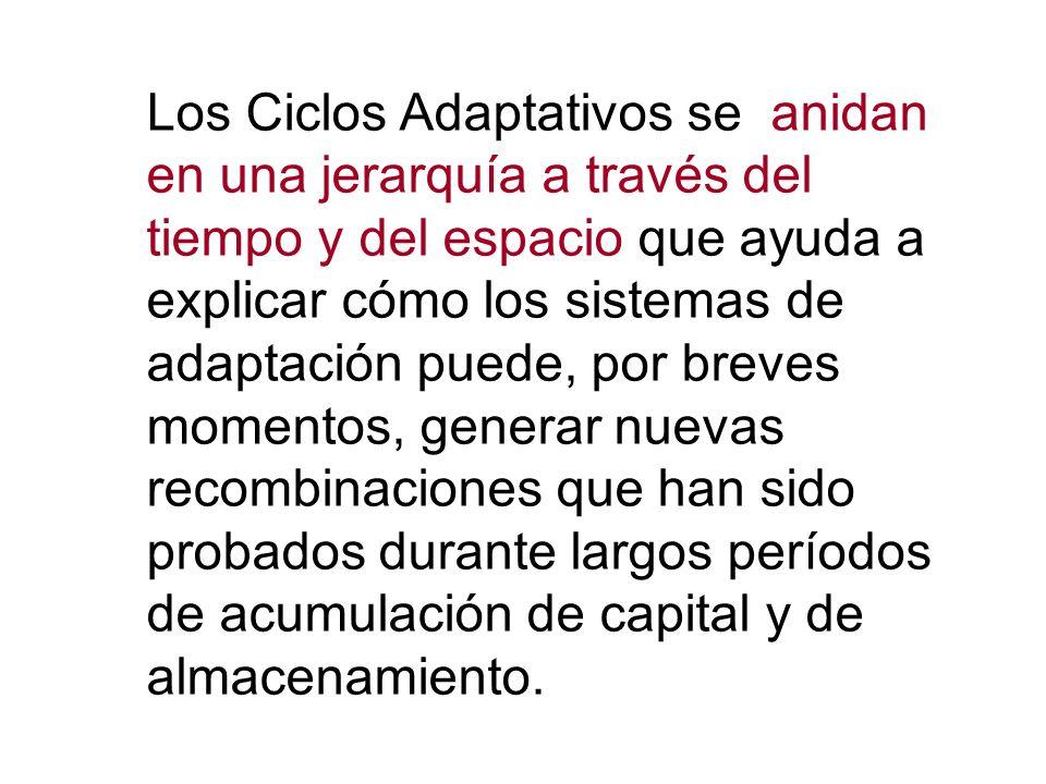 Los Ciclos Adaptativos se anidan en una jerarquía a través del tiempo y del espacio que ayuda a explicar cómo los sistemas de adaptación puede, por br