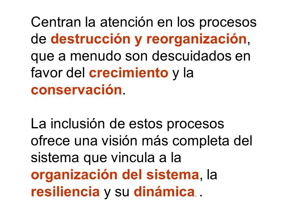 Centran la atención en los procesos de destrucción y reorganización, que a menudo son descuidados en favor del crecimiento y la conservación. La inclu
