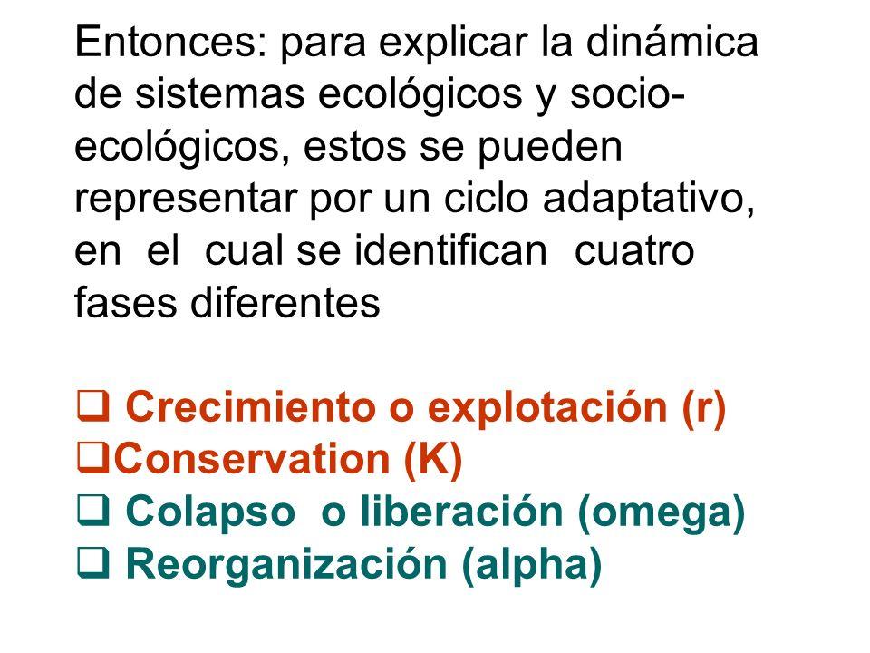Entonces: para explicar la dinámica de sistemas ecológicos y socio- ecológicos, estos se pueden representar por un ciclo adaptativo, en el cual se ide
