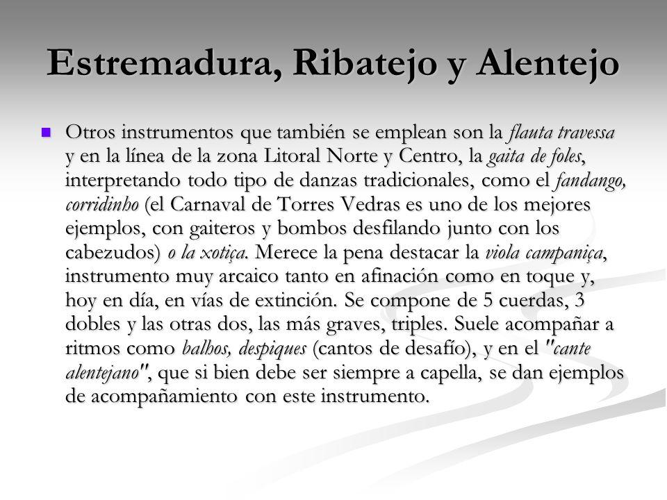 Estremadura, Ribatejo y Alentejo Otros instrumentos que también se emplean son la flauta travessa y en la línea de la zona Litoral Norte y Centro, la