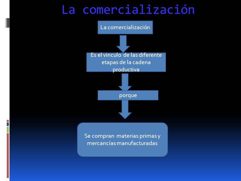 etapas Las etapas de producción y transformación son las mas complejas de la cadena productiva. En ellas intervienen muchos factores Como el lugar don