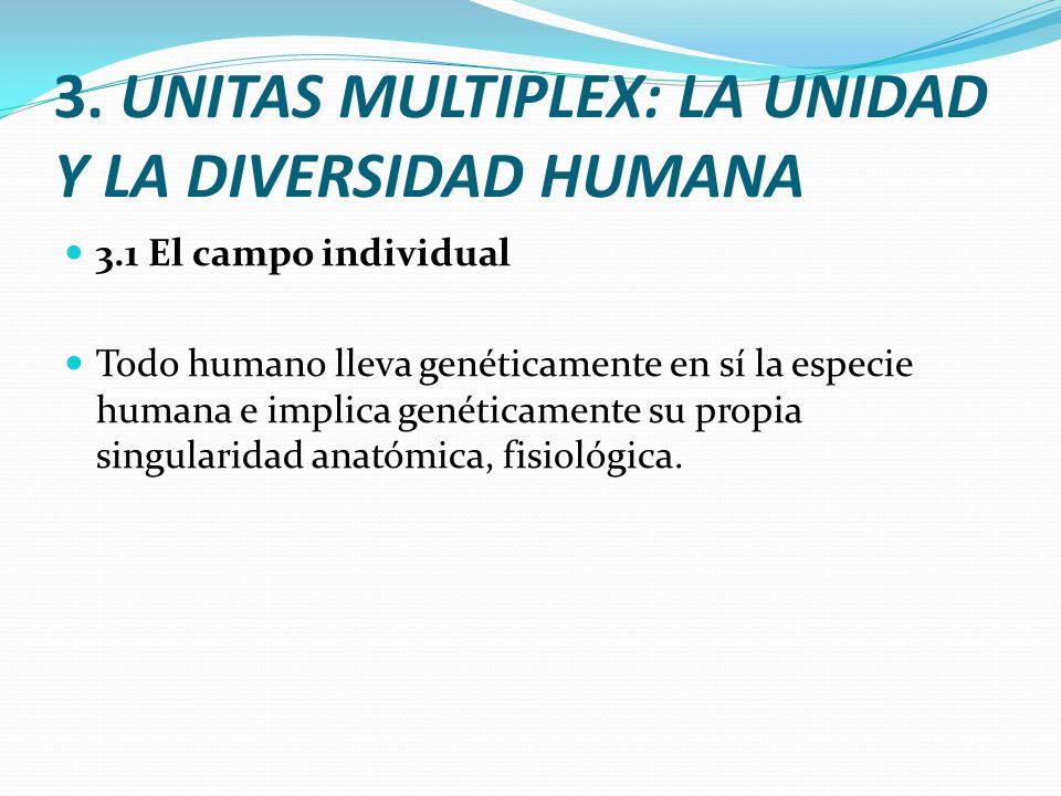 3. UNITAS MULTIPLEX: LA UNIDAD Y LA DIVERSIDAD HUMANA 3.1 El campo individual Todo humano lleva genéticamente en sí la especie humana e implica genéti