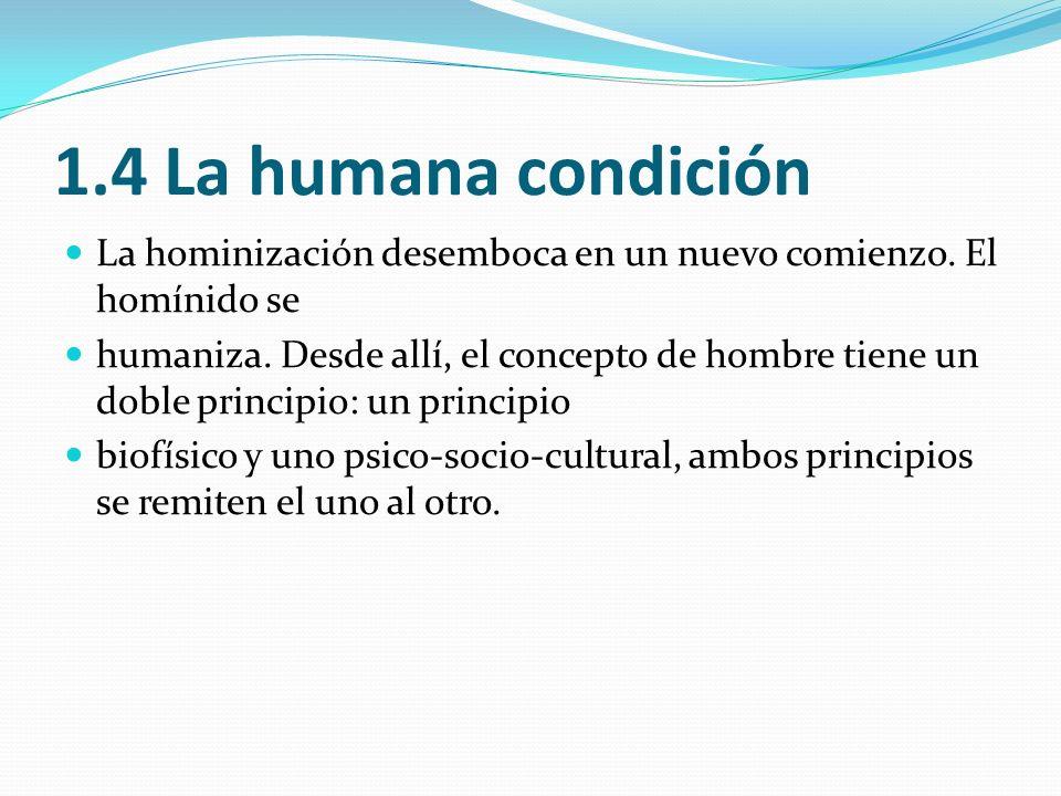 1.4 La humana condición La hominización desemboca en un nuevo comienzo. El homínido se humaniza. Desde allí, el concepto de hombre tiene un doble prin
