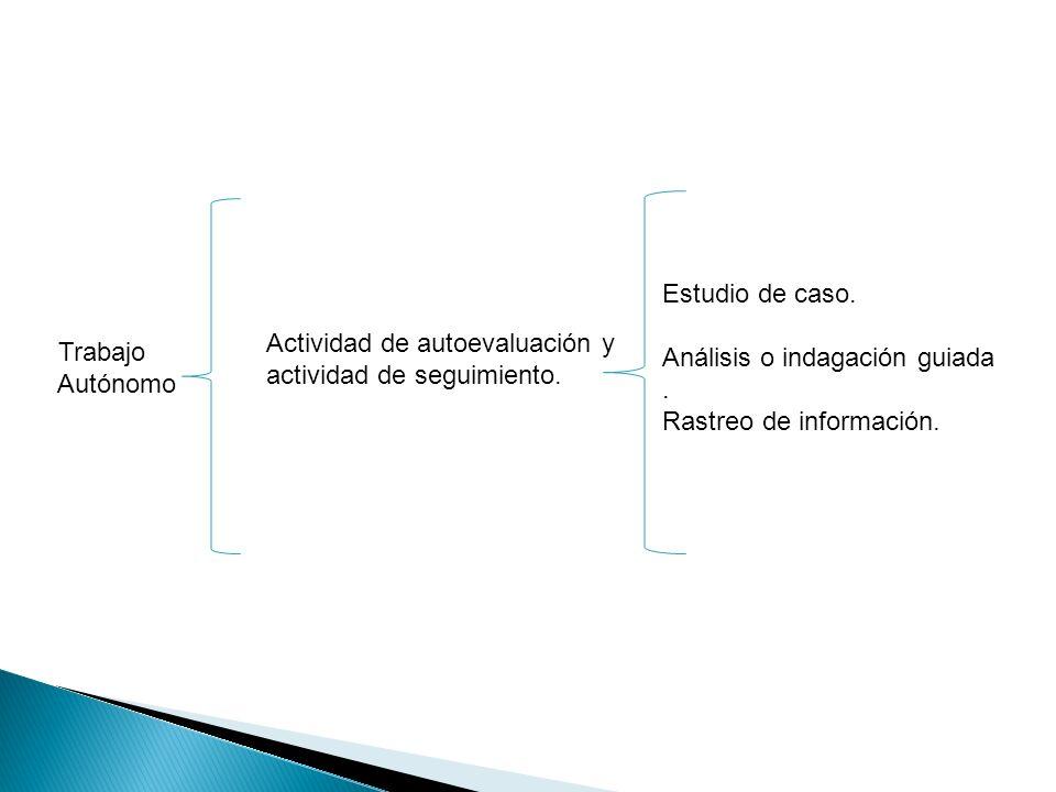 Estudio de caso. Análisis o indagación guiada. Rastreo de información. Trabajo Autónomo Actividad de autoevaluación y actividad de seguimiento.