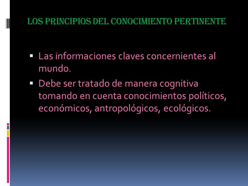 ATENTAMENTE : PROFESOR.SALATIEL SALGADO MONTES DE OCA.
