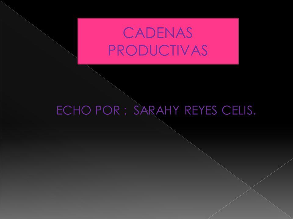 CADENAS PRODUCTIVAS ECHO POR : SARAHY REYES CELIS.