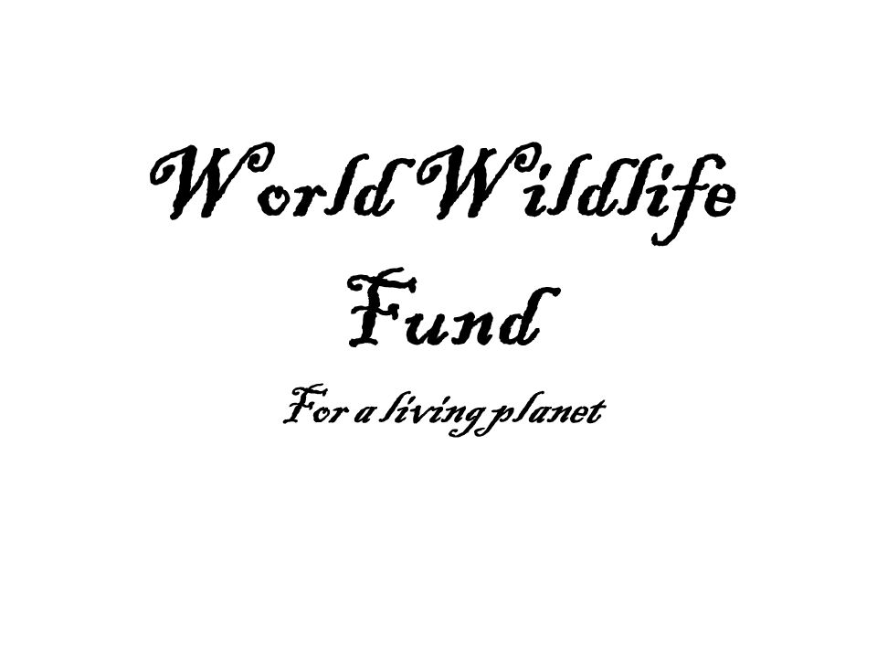 World Wildlife Fund For a living planet